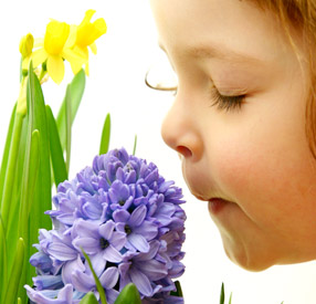 marketing zapachowych, aromamarketing
